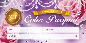 color_passport2